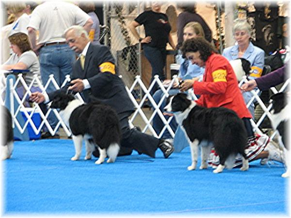 Bob & Jackie showing Ky 2007 - Wilsong Border Collies file 16