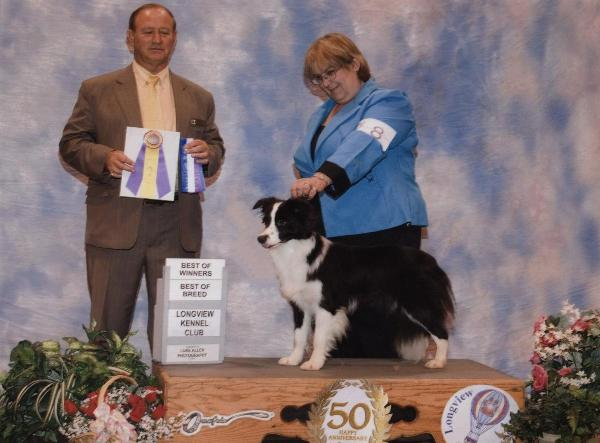 Tracy & Glory of Wilsong Border Collies - Best of Breed